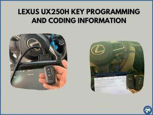 Automotive locksmith programming a Lexus UX250h key on-site